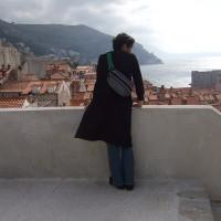 城壁の上から街を見る