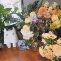 やさしい色のうれしい花