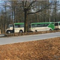 国立公園内を周遊しているバス。私達が行った時はシーズンオフなのでガラガラだけどあと2週間もすれば この3連のバスも木道も人々でいっぱいとのこと。