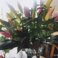 結婚記念日の花