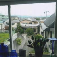 台所出窓風景