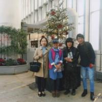 ホテルの隣りの植物園もクリスマスです