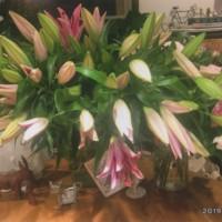 バースディのお花